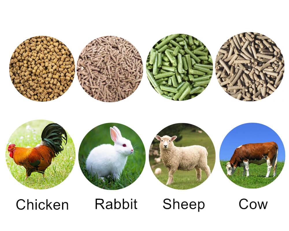 livestock feed pellet