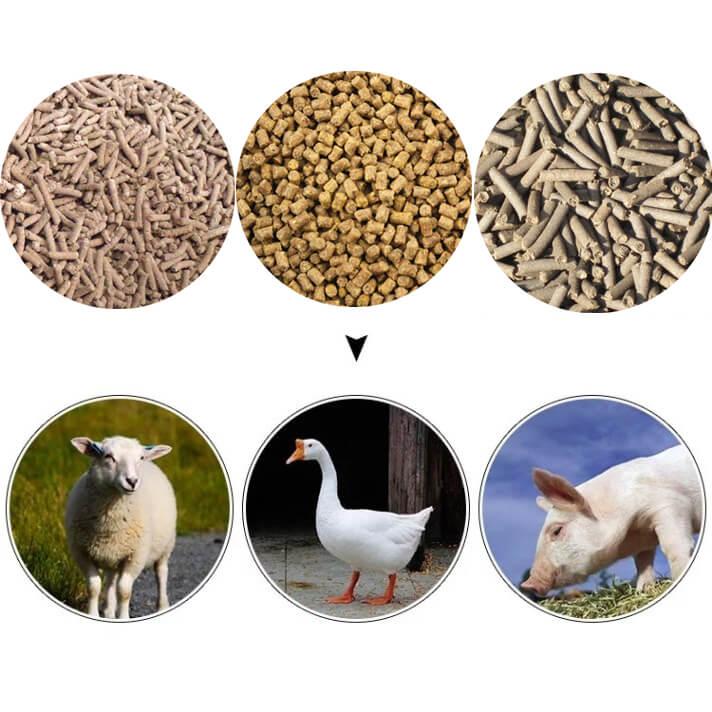 produced feed pellet
