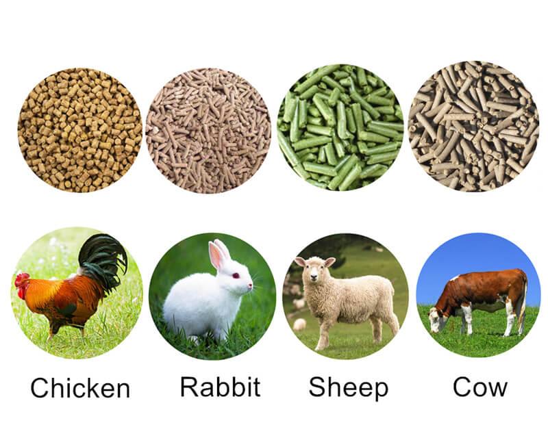 animal feed pellet size