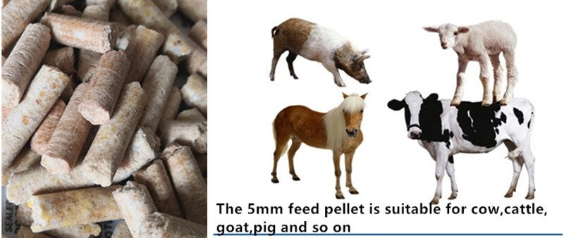 cattle feed pellet size