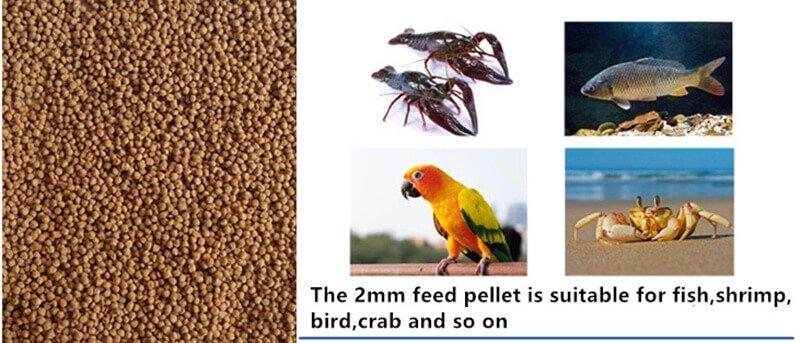 fish feed pellet size