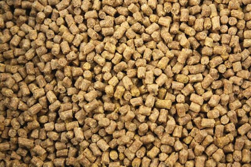 rabbit feed pellet