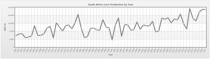 South Africa corn production